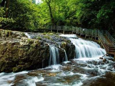 绵阳户外运动徒步 雅安龙苍沟国家森林公园环线徒步赏景