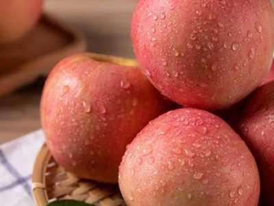 芙蓉花美容功效 吃蒸苹果有什么好处